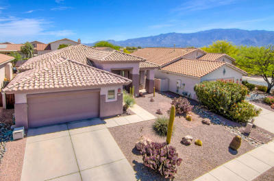 Oro Valley Single Family Home For Sale: 202 W Carlynn Cliff Place