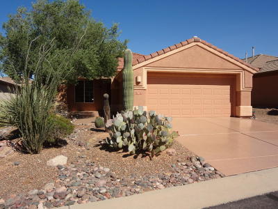 Marana Single Family Home Active Contingent: 13673 N Gold Cholla Place