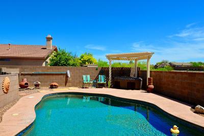 Single Family Home For Sale: 7557 S La Palma Court