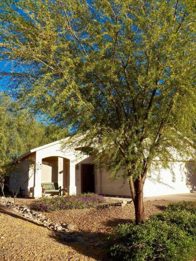 Single Family Home Active Contingent: 8631 S Desert Skyline Place