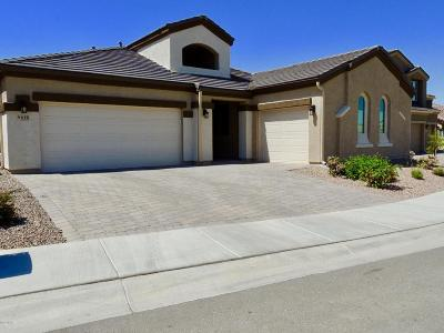 Marana Single Family Home For Sale: 9615 N Melandra Way