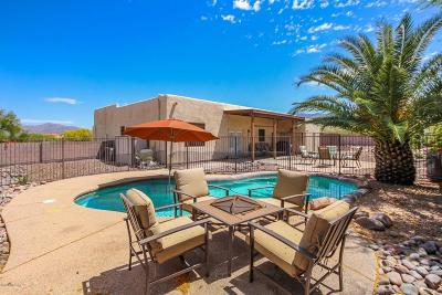 Tucson Single Family Home For Sale: 10990 E Siskin Place