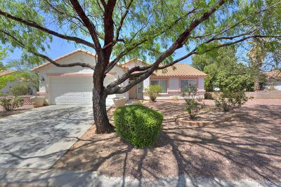 Single Family Home For Sale: 1190 Desert Dawn