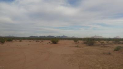 Residential Lots & Land For Sale: Shadows Desert Lane #262/28
