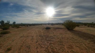 Residential Lots & Land For Sale: N Shadows Desert Lane #58/29