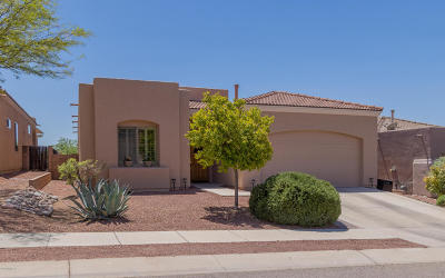 Pima County Single Family Home For Sale: 13604 E High Plains Ranch Street