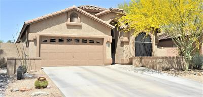 Tucson Single Family Home For Sale: 6152 W Koch Place