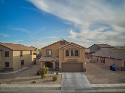 Pima County Single Family Home For Sale: 663 W Calle Franja Verde