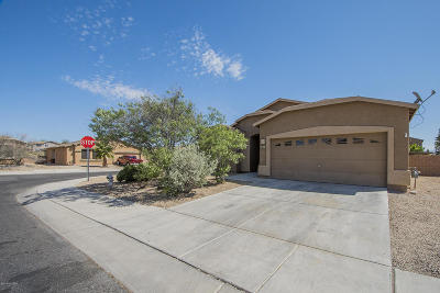 Single Family Home For Sale: 7041 S Camino De Ayer