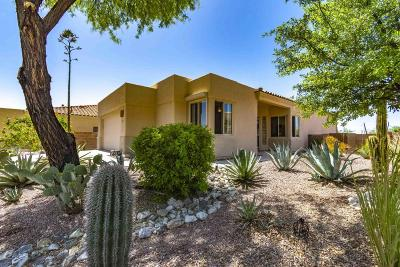 Pima County Single Family Home For Sale: 5289 N Canyon Rise Place