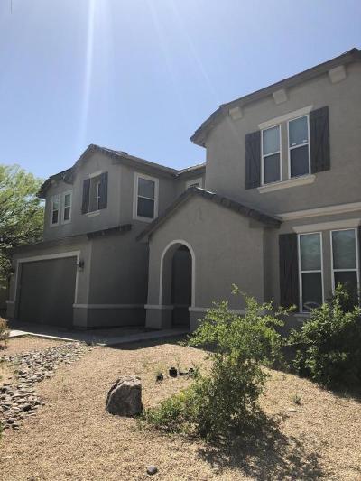 Pima County Single Family Home For Sale: 4756 E Starflower Street