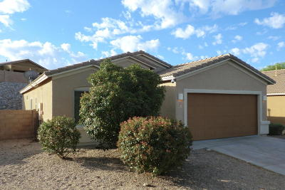 Vail AZ Single Family Home For Sale: $198,880