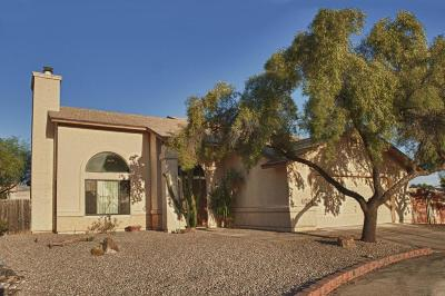 Tucson Single Family Home For Sale: 9790 N Donegal Place