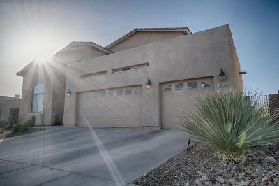 Tucson Single Family Home For Sale: 39662 S Horse Run Drive