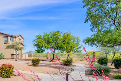 Pima County Single Family Home For Sale: 620 W Paseo Celestial
