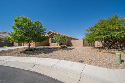 Pima County Single Family Home For Sale: 14387 N Arrowpoint Ash Ave