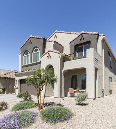 Marana Single Family Home For Sale: 8998 W Rolling Springs Drive