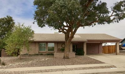 Tucson Single Family Home For Sale: 4818 W Red Wolf Drive