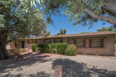 Tucson Single Family Home Active Contingent: 3311 E Terra Alta Boulevard