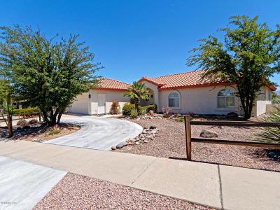 Green Valley Single Family Home For Sale: 435 S Camino Del Portillo