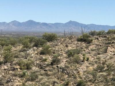 Tucson Residential Lots & Land For Sale: 15401 Alternative Way E