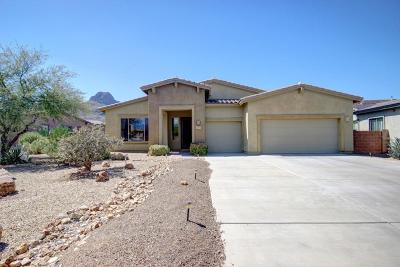 Tucson Single Family Home For Sale: 8515 N Ironwood Reserve Way
