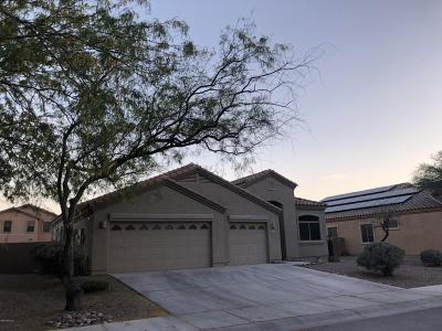 Marana Single Family Home Active Contingent: 11125 W Gallinule Drive