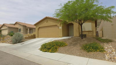 Tucson Single Family Home For Sale: 3054 W Mountain Dew Street