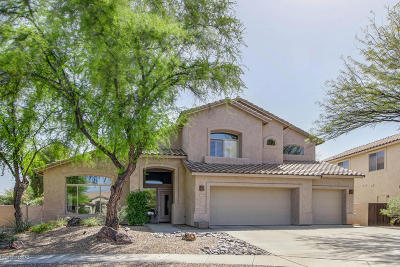 Tucson Single Family Home For Sale: 2262 N Split Rock Place