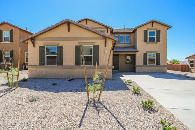 Tucson Single Family Home For Sale: 4432 S Saginaw Hill Drive