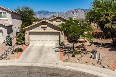 Tucson Single Family Home For Sale: 3600 W Sunbonnet Place