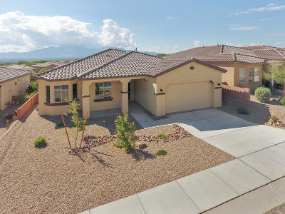 Pima County Single Family Home For Sale: 780 N Camino Cerro La Silla