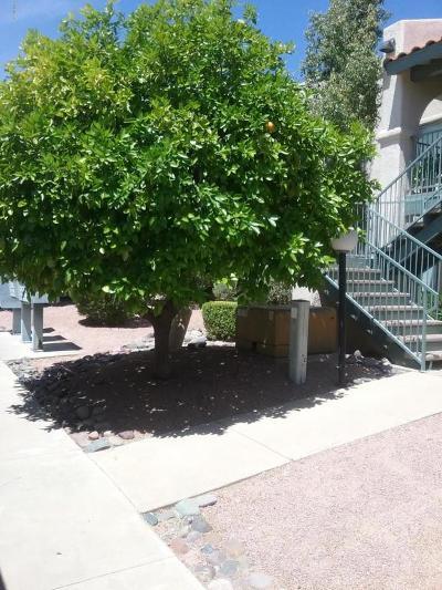 Tucson AZ Condo For Sale: $84,000