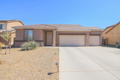 Marana Single Family Home For Sale: 12564 N Green Oak Drive