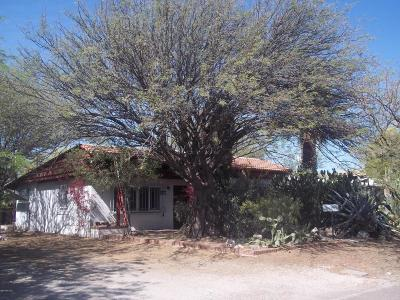Tucson Single Family Home For Sale: 1433 E Lee Street