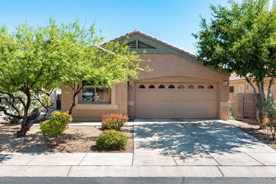 Tucson Single Family Home For Sale: 6670 E Cooperstown Drive