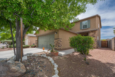 Tucson Single Family Home For Sale: 6396 S Sunrise Valley Drive