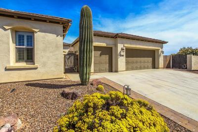 Oracle Single Family Home For Sale: 31915 S Misty Basin Road