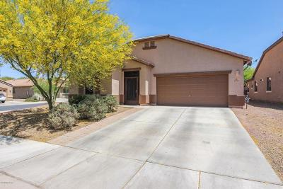 Marana Single Family Home Active Contingent: 12748 N Brabant Drive