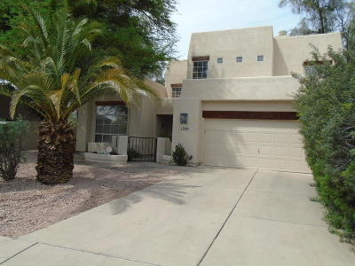 Tucson Single Family Home For Sale: 2486 N Quesnel Loop