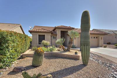 Single Family Home For Sale: 2111 E Desert Fox Drive