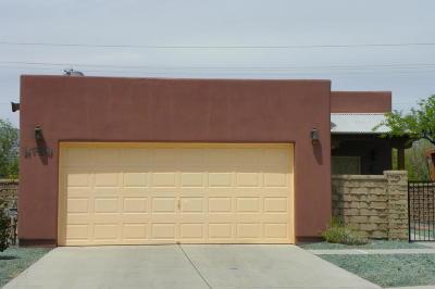 Tucson Single Family Home For Sale: 8789 E Corte Caida Del Sol