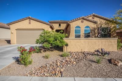 Pima County Single Family Home For Sale: 6487 W Whispering Windmill Lane