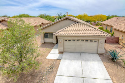 Marana Single Family Home Active Contingent: 12961 N Pocatella Drive