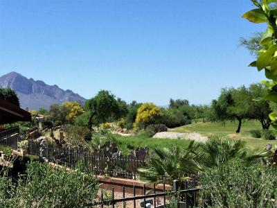 Oro Valley Single Family Home For Sale: 14329 N Silkwind Way
