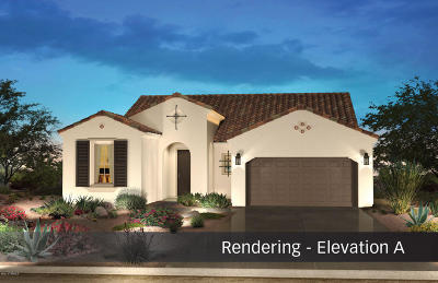 Tucson Single Family Home Active Contingent: 62664 E Border Rock Road