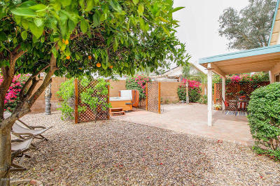 Tucson Single Family Home For Sale: 3706 W Sunbright Drive