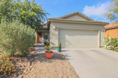 Single Family Home For Sale: 891 E Catkins Place