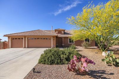 Pima County Single Family Home For Sale: 7128 W Brightwater Way