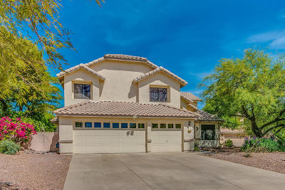Oro Valley Single Family Home For Sale: 12400 N Granville Canyon Way